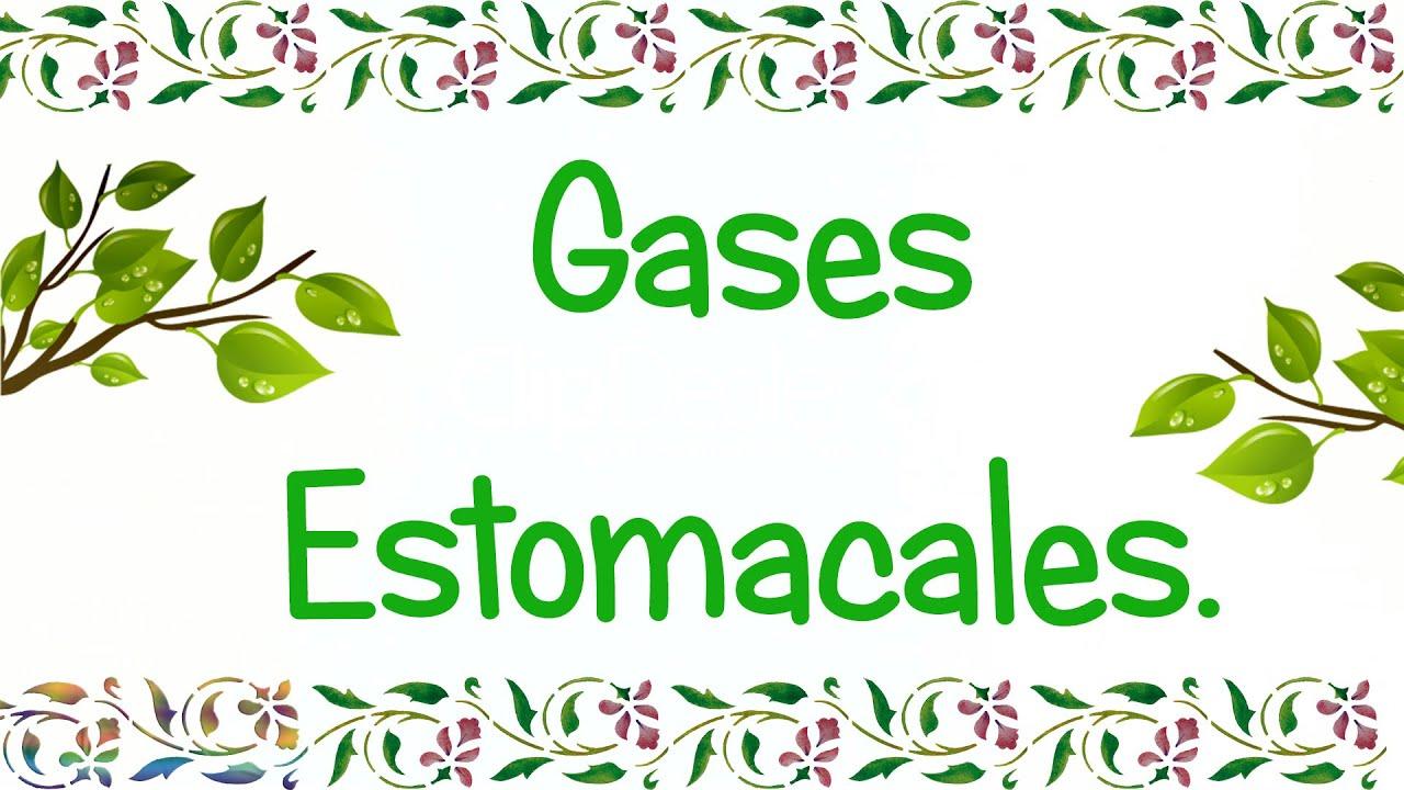 Los trucos de la abuela remedios naturales para los gases - Meteorismo remedios ...