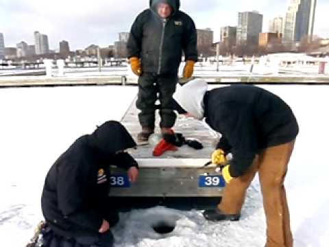 FATTY brown trout.Milwaukee harbor ice fishing. lake Michigan charter fishing.fish wisconsin