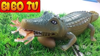 Crocodile Toys For Children - Đồ Chơi Cá Sấu Cho Bé Trai
