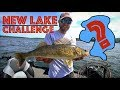 How to Find and Catch Walleyes on a NEW LAKE