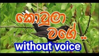 Kowula Wage Karaoke (without voice) කොවුලා වගේ