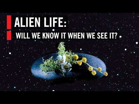 Alien Life: How Close Are We To Finding It?