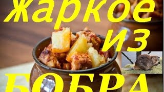 Жаркое из бобра! Roast beaver! cook beaver meat!