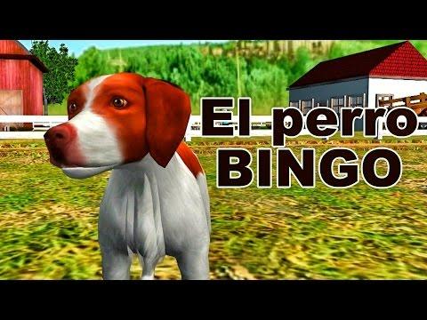 Bingo - Canciones Infantiles - Rondas para Niños - Español