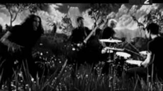 Watch Afi Affliction video