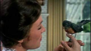 Mary Poppins (1964): Trailer HQ