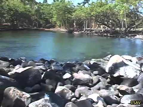 Hurricane Iselle Damage & Recovery in Puna, Hawaii