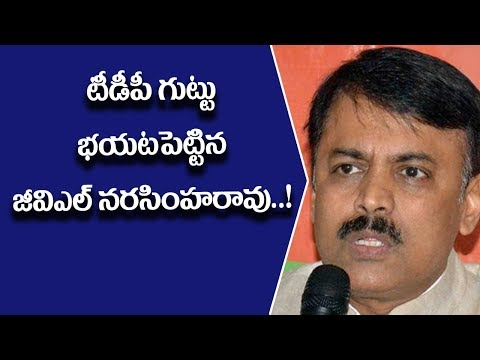 GVL Narasimha Rao relieved TDP secret cheating videos to public ll Pulihora News
