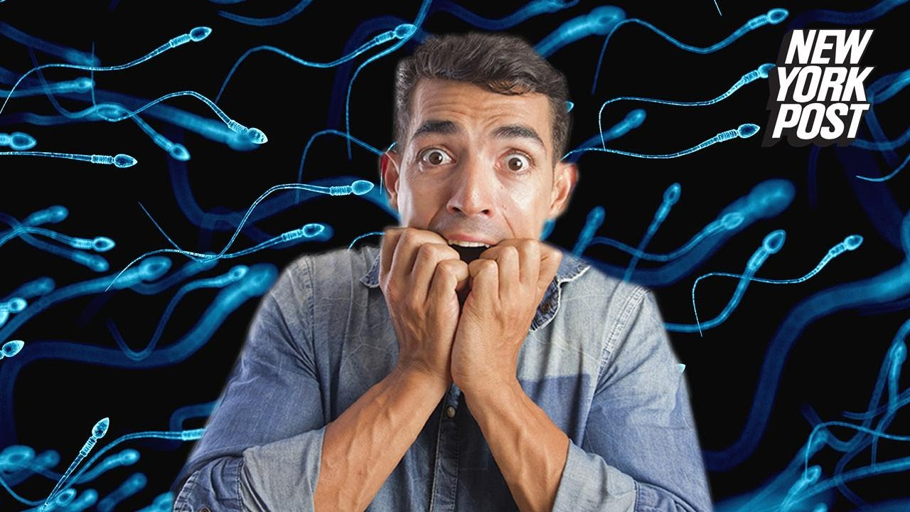 Low sperm count could spell the end of the human race | New York Post