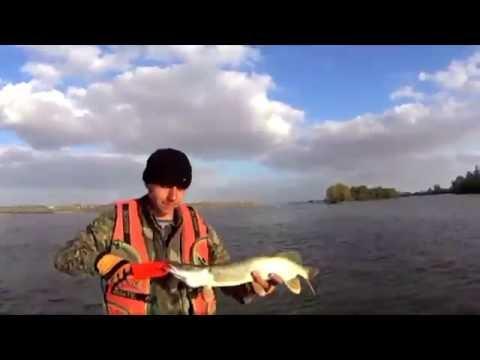 фион омск форум рыбаков отчеты о рыбалке озеро чаны