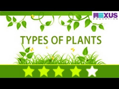 Different types of plants and their uses