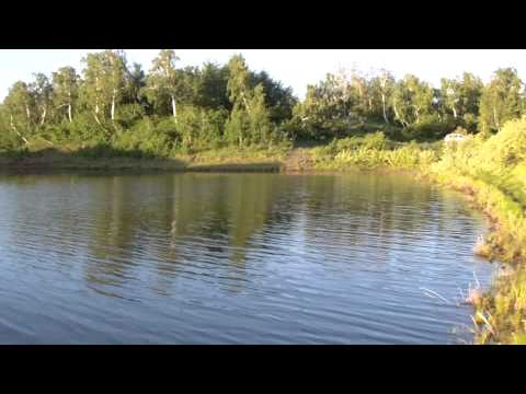 ловля рыбы на реке тобол