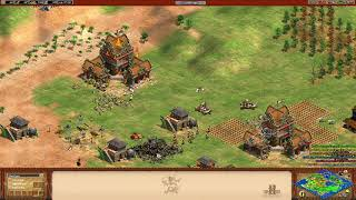 Age of Empires II  - The Best Mangonel Shut (Castle destroyed :D)