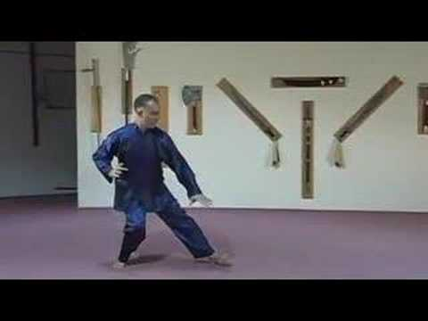 Yang Tai Chi - training DVD Trailer Image 1