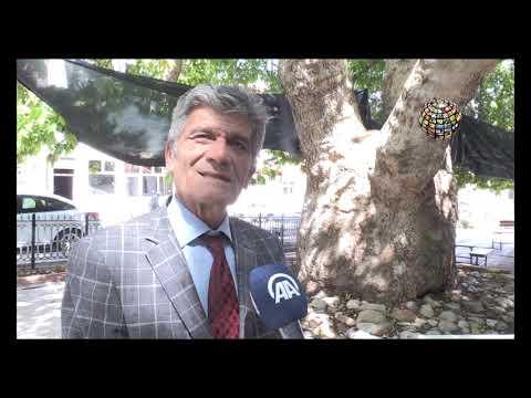 Afyon'da neresi gezilir / Ulu Çınar ağacını mutlaka görün!