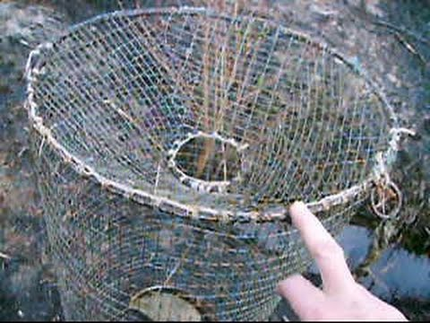 ловля рыбы на самодельную морду