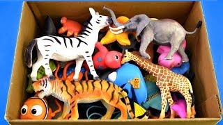 Learn Wild Zoo Animals Name For Kids Safari Animal Names Learn Colors