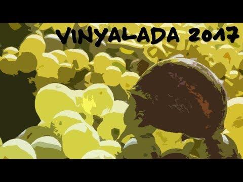 Vinyalada 2017