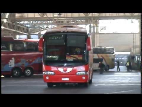 buses de chile