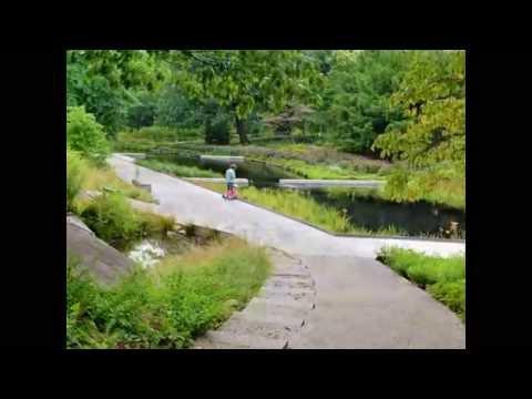 Native Plant Garden of the New York Botanical Gardens