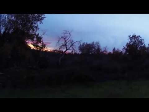 Caccia ai tordi in Calabria