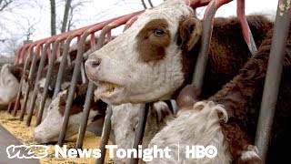 Trump's Feud With China Is Already Hurting American Farmers (HBO)