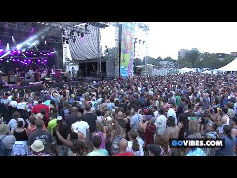 Thumbnail of video The Black Crowes -