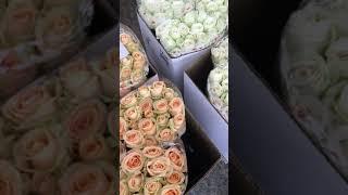 Цветочный оптовый рынок в Краснодаре