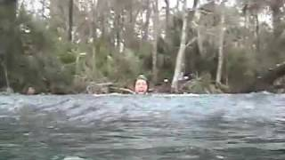 Manatee Diving Experiance