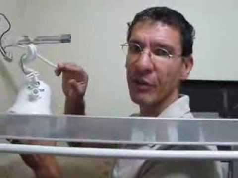 Manutenção caseira como trocar um chuveiro elétrico por Flávio Eduardo Fuso