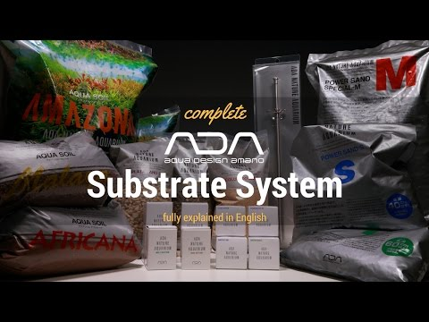 ADA Basics - Substrate System (english)
