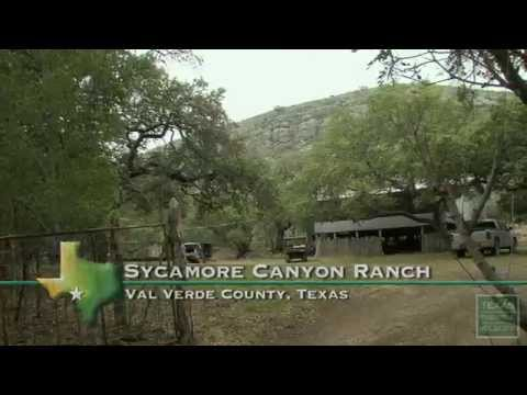 2014 Lone Star Land Steward: Sycamore Canyon Ranch - Texas Parks and Wildlife [Official]