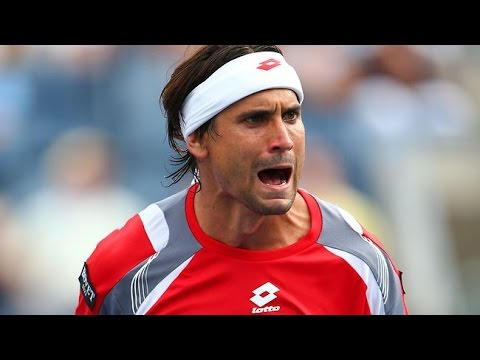 David Ferrer ANGRY