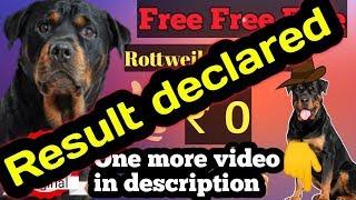 Free Rottweiler dog adoption result.