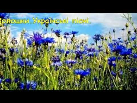 Волошки. Українські пісні.