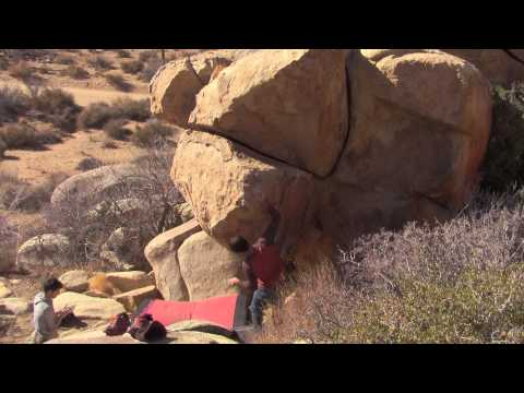 JTree Bouldering - Mulligan Variation V8