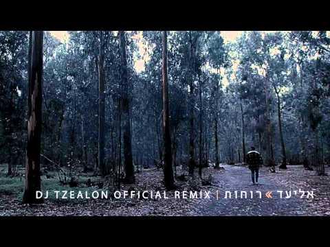 אליעד - רוחות | DJ Tzealon Official Remix