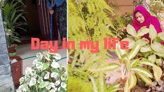 Day in my life | beef Mandhi | Nursery visit