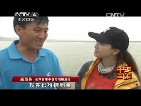 中國-走遍中國-20140617 捕魚達人