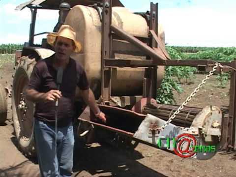 Microorganismos Importantes para el suelo