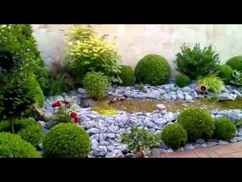 Mein Kleiner Gartenteich