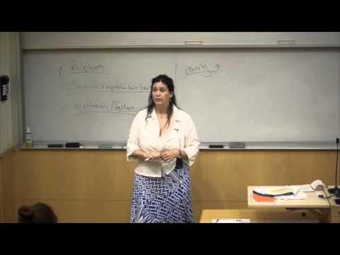 Fsi 2013: Gender And Nonviolent Conflict - Dyan Mazurana & Roxanne Krystalli video