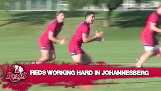 Reds working hard in Johannesburg   Super Rugby Video Highlights