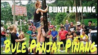 Ngakak! Bule Panjat Pinang 17 Agustus 2017 Di Bukit Lawang | Greasy Pole Climbing Contest