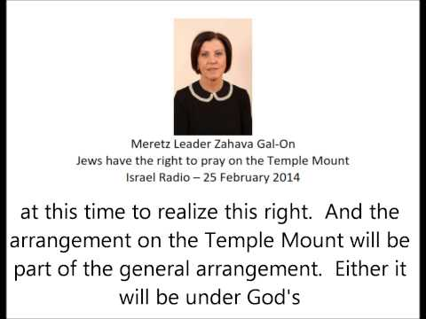 Meretz Leader Zahava Gal-On: Jewish Prayer on Temple Mount in Deal with Palestinians