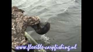 Flexible carpfishing Big Carp jogi (Drill grote karper)