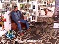 Scoala de dresaj Gabriel Cocu [video]
