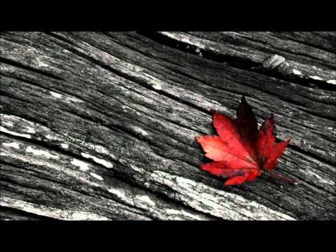 Sed Project - ✝ (The Cross) feat. Lisette Van Den Berg