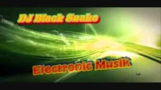 Download Lagu Dj black Snake electronic musik 2011 Gratis STAFABAND