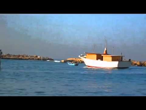 Gaza's Ark - Ship of Hope